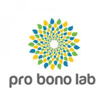 Panorama 2019 du Pro Bono