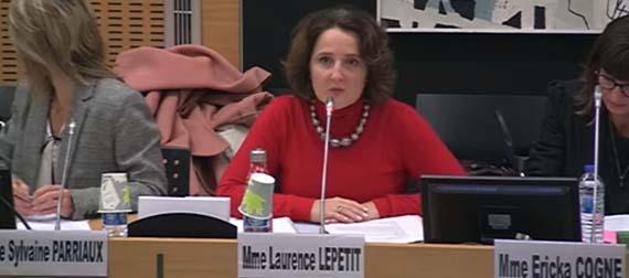 lobbying commission laurence lepetit